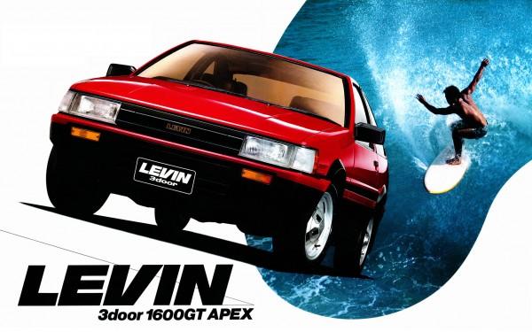 levin-1